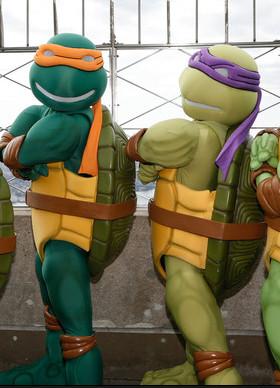 Rudd's turtles