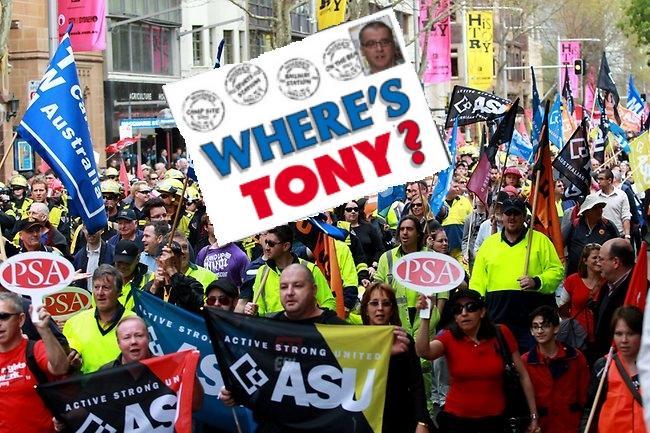 Where's Tony