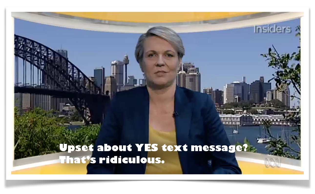 SSM: Tanya Plibersek defends Yes campaign after thousands receive same-sex  marriage texts
